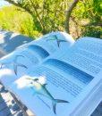 living-sanibel-book-fish-guide