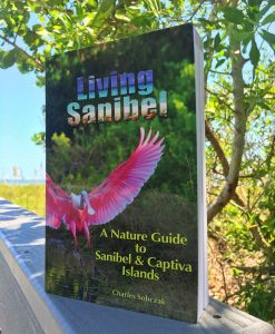 living-sanibel-book