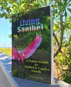 living-sanibel-book